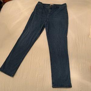 J Jill Denim Tried and True Fit Straight Leg